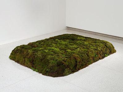 Meg Webster, 'Moss Bed, King', 1986