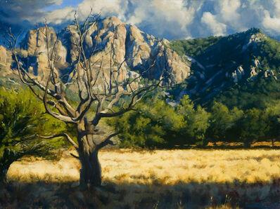 Bob Stuth-Wade, 'Juniper Flats', 2015