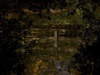 Susan Derges, 'Water Drop Wort Bridge', 2013