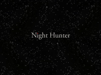 Stacey Steers, 'Night Hunter (film)'