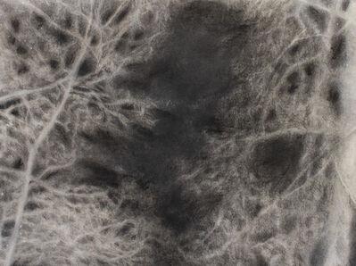 Eliana Marinari, 'Achromatic Recollection Nr. 2', 2019
