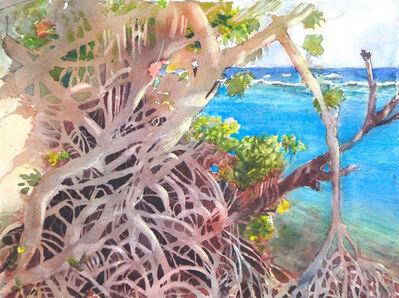 Carolyn Newberger, 'Mangrove', 2015