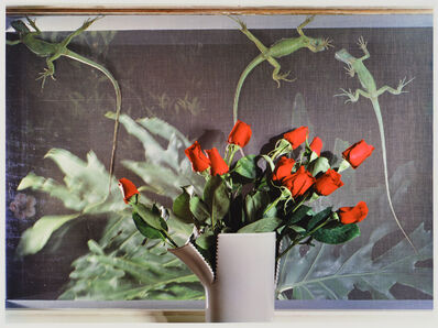 Jo Ann Callis, 'Roses and Lizards', 1980