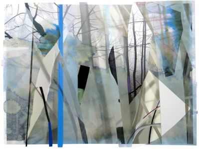 Sandy Litchfield, 'Scrap Paper and Woods 2', 2012