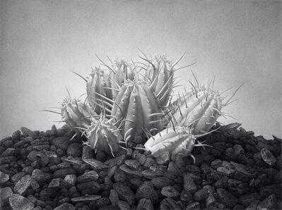 Eric Wert, 'Giant', 2002