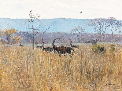 Giuseppe Bottero, 'The Gallant Breed', 1960