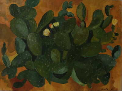 Laila Shawa, 'Cactus', 1968