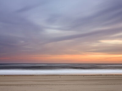 Daniel Jones, 'Resting Gulls at Cooper's Beach at Dusk ', 2014