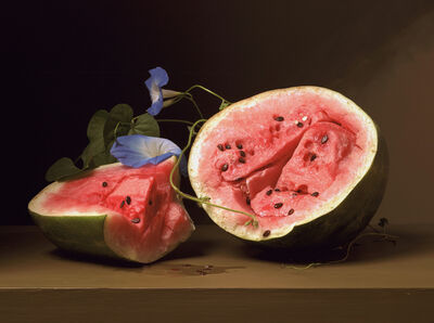 Sharon Core, 'Early American, Melons and Morning Glory', 2008