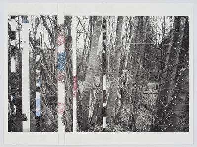 Denise Green, 'Ardennes Uncovered: Forays (#2 Variant)', 2015