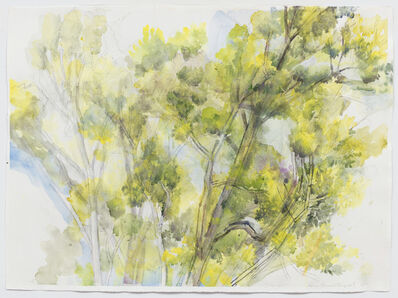 Sylvia Plimack Mangold, 'The Pin Oak July 2015', 2015