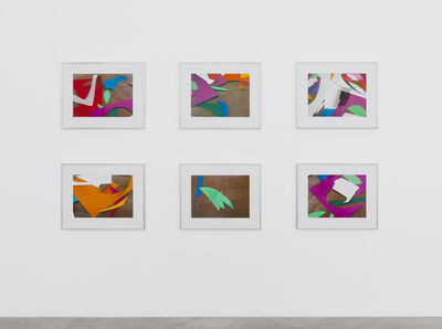 Thomas Demand, 'Cuttings', 2014
