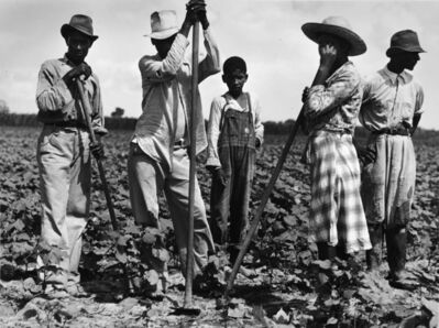Marion Post Wolcott, 'Men and women working in a field, Bayou Bourdeaux Plantation, Natchitoches, LA', 1940