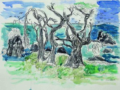 Lawrence Halprin, 'Sea Ranch ', 2006