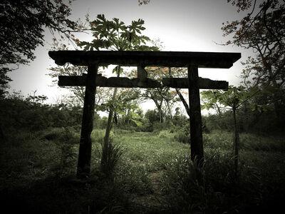 Osamu James Nakagawa, 'gate', 2001-2009