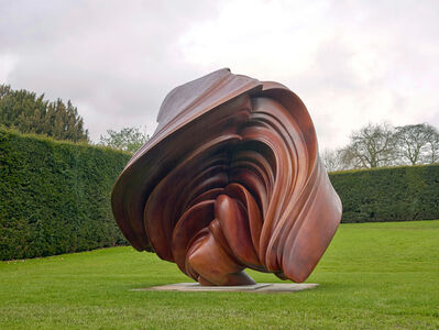 Tony Cragg, 'Willow', 2014
