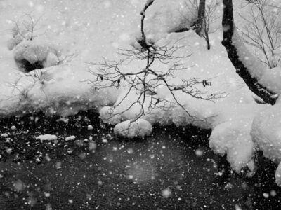 Wenlong Ye, 'Winter Snow'