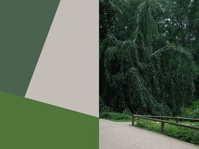 Yair Barak, 'Park & Recreations #4', 2018