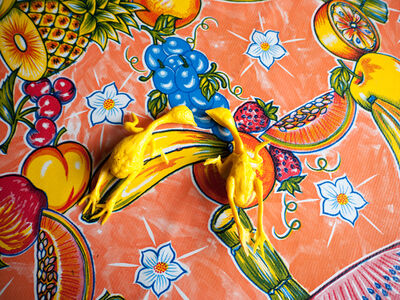 Yolanda Andrade, 'Naturaleza muerta con pollo, Ciudad de México', 2013