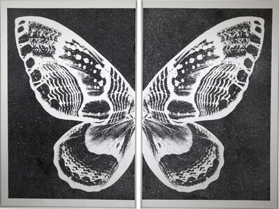 Rubem Robierb, 'Hybrid Silver Butterfly I on Black', 2016