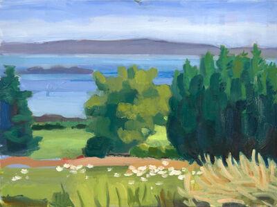 John Goodrich, 'Bushes, Beal's Island', 2015