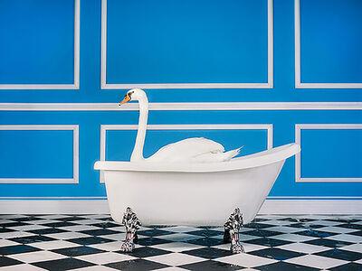 Tyler Shields, 'The Swan', 2020