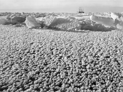 Frank Hurley, 'Crystal ice flowers on the surface of the newly frozen ice, with Endurance frozen behind', ca. 1911