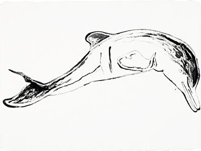 Andy Warhol, 'Plata River Dolphin', 1986