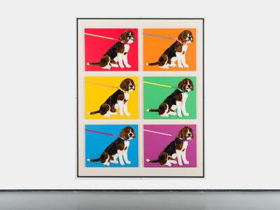 Michael Shultis, '6 Purebred Beagles', 2019