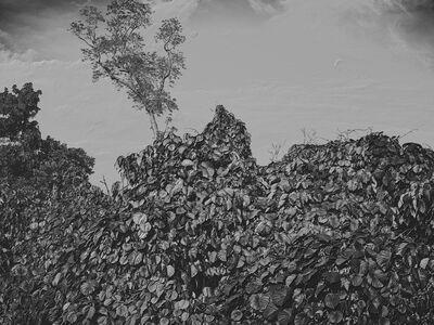 Jon Wyatt, 'Fault Line III', 2015