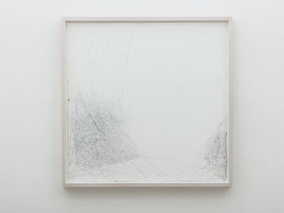 Tomás Saraceno, 'Semi-social semi-social mapping of Eridanus II by a solo Cyrtophora citricola - one week and a solo Cyrtophora - three weeks', 2016