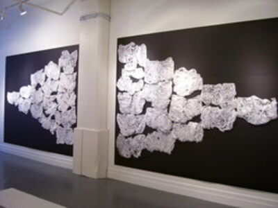 Jose-Ricardo Presman, 'Silver and Golden, installation view', 2010