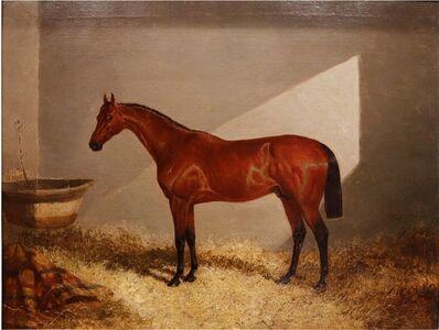 John Frederick Herring Sr., 'Bloomsbury, Winner of the Derby Oil on Canvas', 1839