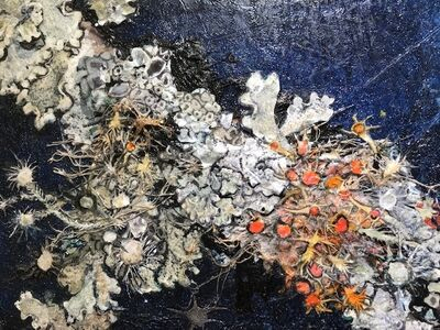 Rosemary Feit Covey, 'Lichens', 2019