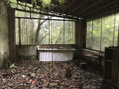 Marylee Coll, 'Serie testigos del desarraigo  N36', 2018