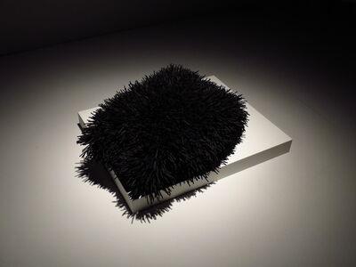 Ingrid Bachmann, 'Pelt 4', 2012