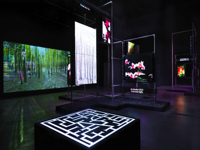 Hito Steyerl, 'This is the Future', 2019
