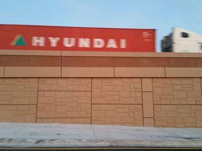 Lynné Bowman Cravens, 'Hyundai ', 2017