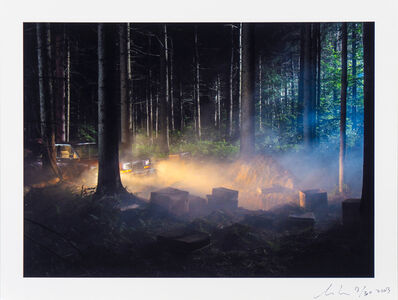 Gregory Crewdson, 'Production Still (Man in the Woods #4)', 2003