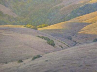 Willard Dixon, 'West Marin Hills / rolling California hills landscape - realism ', 2019