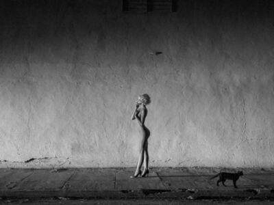 Tyler Shields, 'Black Cat'