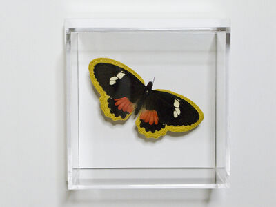 Esther Traugot, 'Black White Red Butterfly', 2020