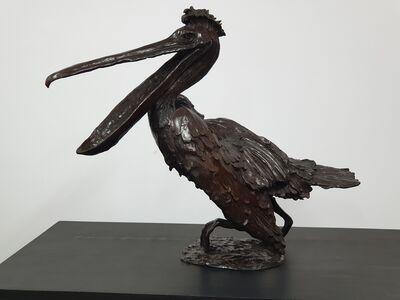 Jose Maria David, 'Pelican Laughing ', 1984