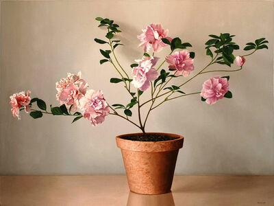 Renato Meziat, 'Pink Azalea', 2008