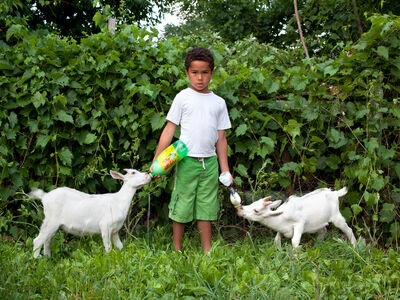 Corine Vermeulen, 'PJ and Goats', 2011