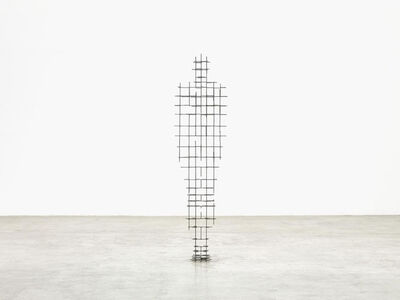 Antony Gormley, 'FALL', 2018
