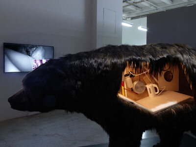 Abraham Poincheval, 'Dans la peau de l'ours (Inside the skin of a bear)', 2014