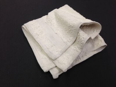 Beth Campbell, 'Loose folded washcloth', 2014