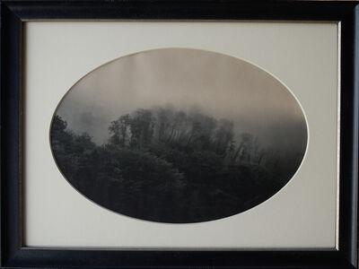 Kate Breakey, 'Trees in Mist, Menabbio, Italy', 2010-2019