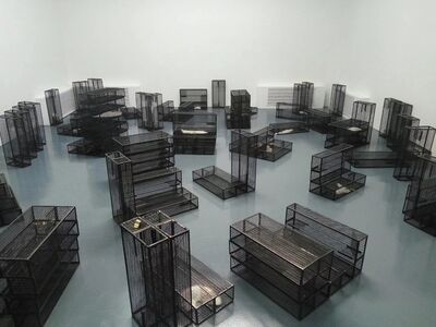 Wu Wei, 'Cage', 2017